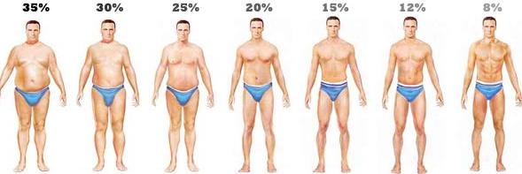 body fat calculator for men