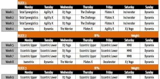P90X3 Mass Schedule